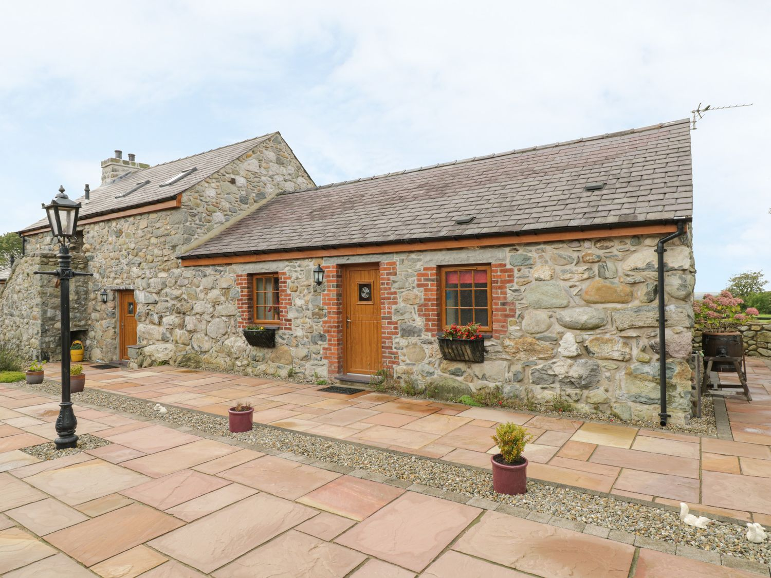Daffodil Cottage - North Wales - 5741 - photo 1