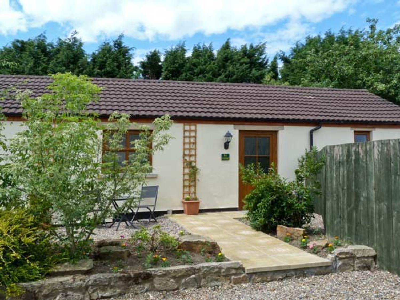 Ivy Cottage - Yorkshire Dales - 6872 - photo 1
