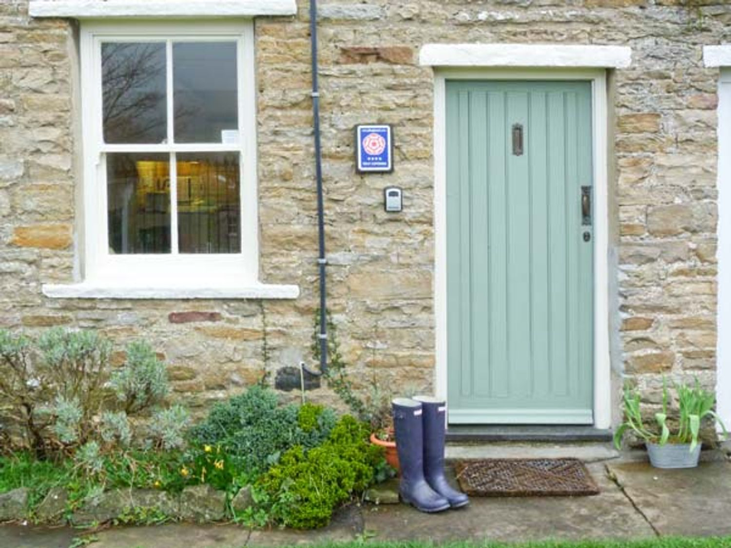 Lavender Cottage - Yorkshire Dales - 729 - photo 1
