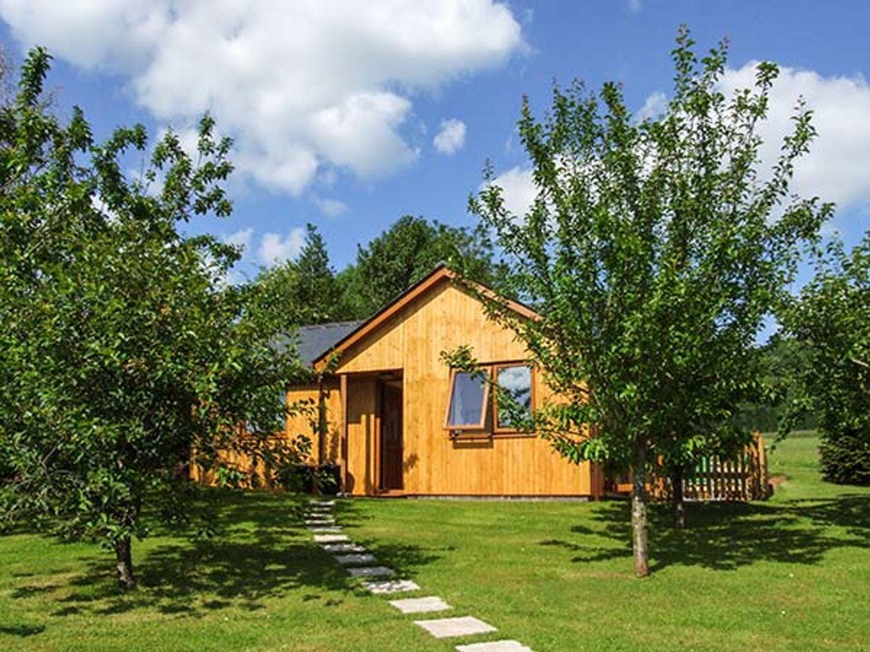 Orchard Cottage - Herefordshire - 913250 - photo 1
