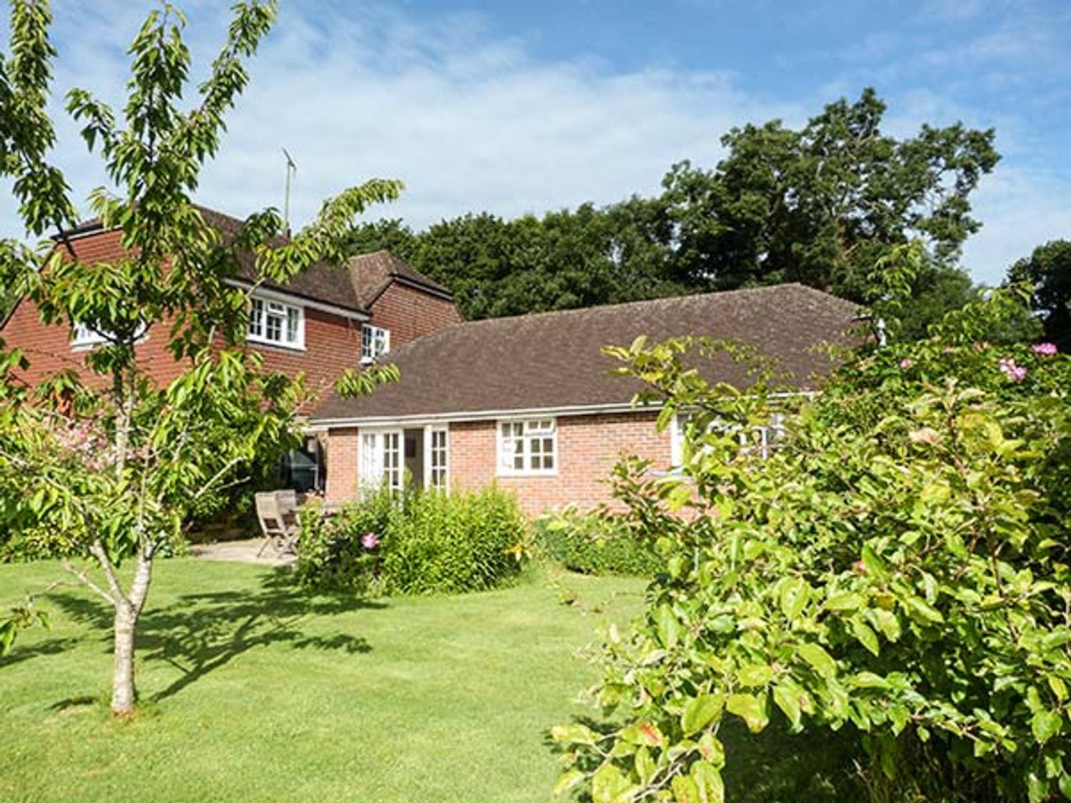 Willow Cottage - Kent & Sussex - 915094 - photo 1