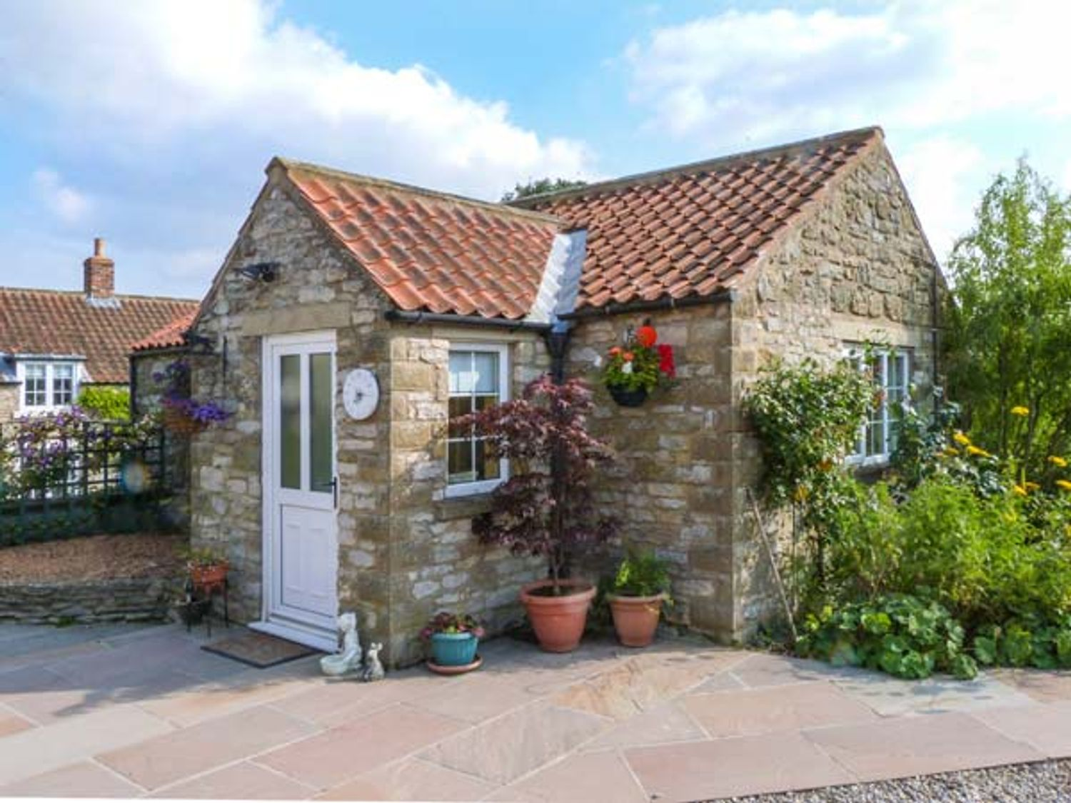 Peg's Cottage - Whitby & North Yorkshire - 917006 - photo 1