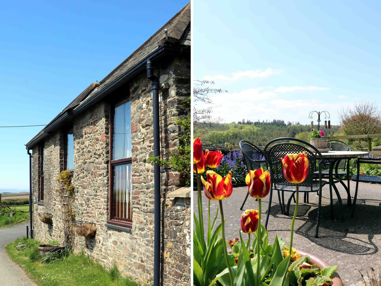 Primrose Cottage - Devon - 917906 - photo 1
