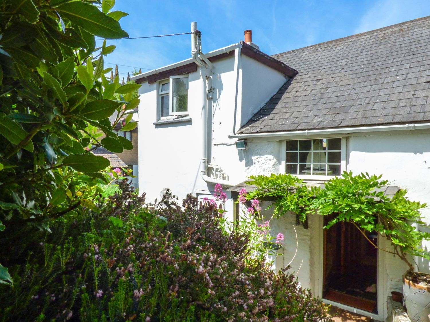 Swallow Cottage - Cornwall - 918497 - photo 1
