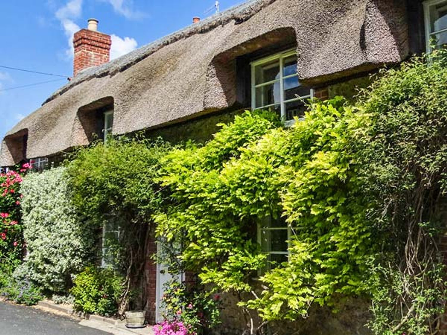 Little Thatch, Dorset