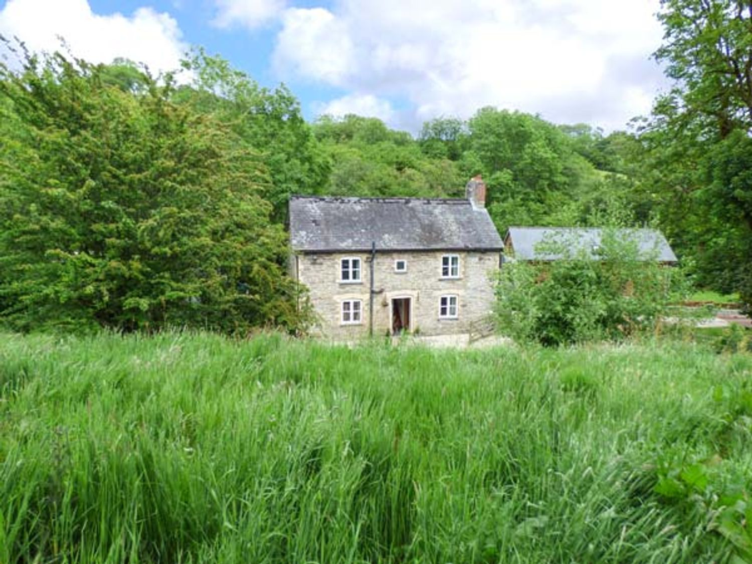 Ploony Cottage - Mid Wales - 926667 - photo 1