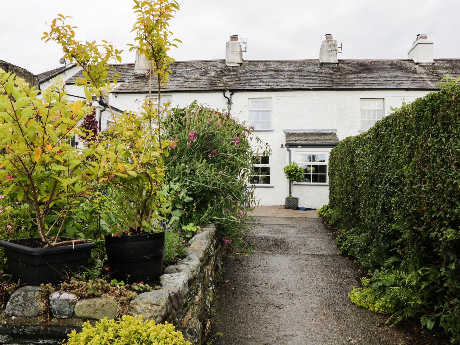 Pearl Cottage - Lake District - 931726 - photo 1