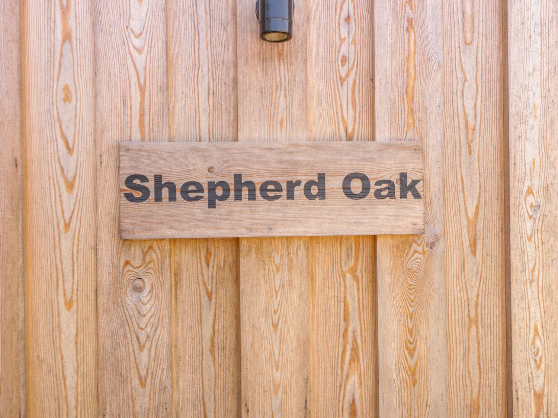 Shepherd Oak, Dorset