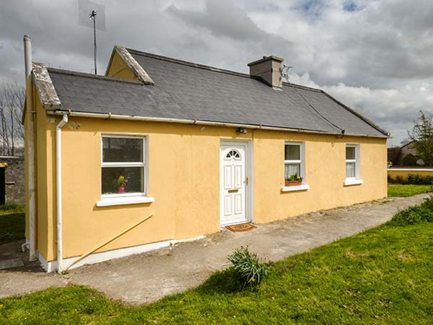 Adare Field Cottage - South Ireland - 933140 - photo 1