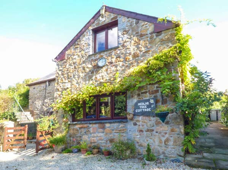 Medlar Tree Cottage - Cornwall - 938028 - photo 1