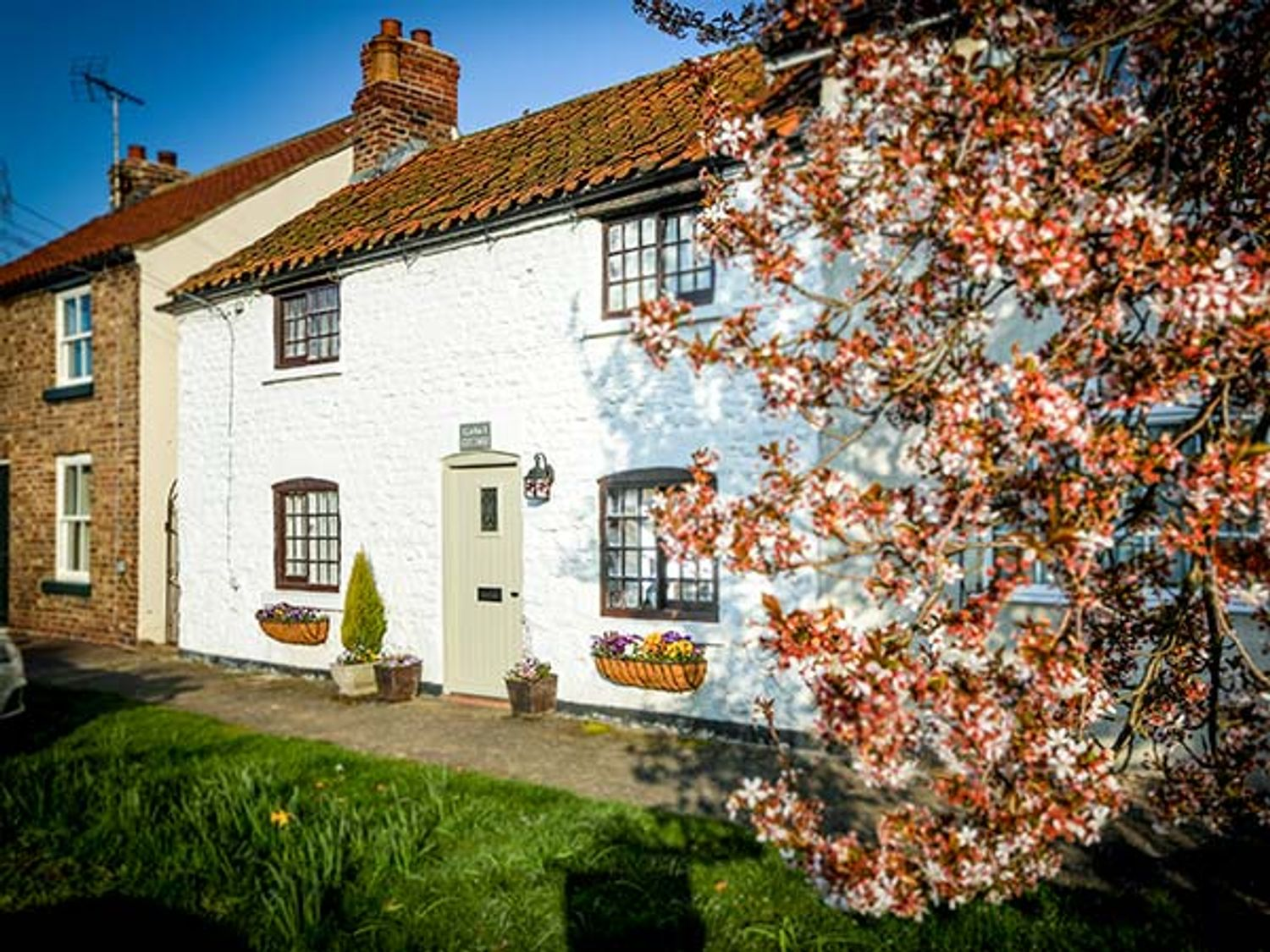 Clara's Cottage - Whitby & North Yorkshire - 950877 - photo 1
