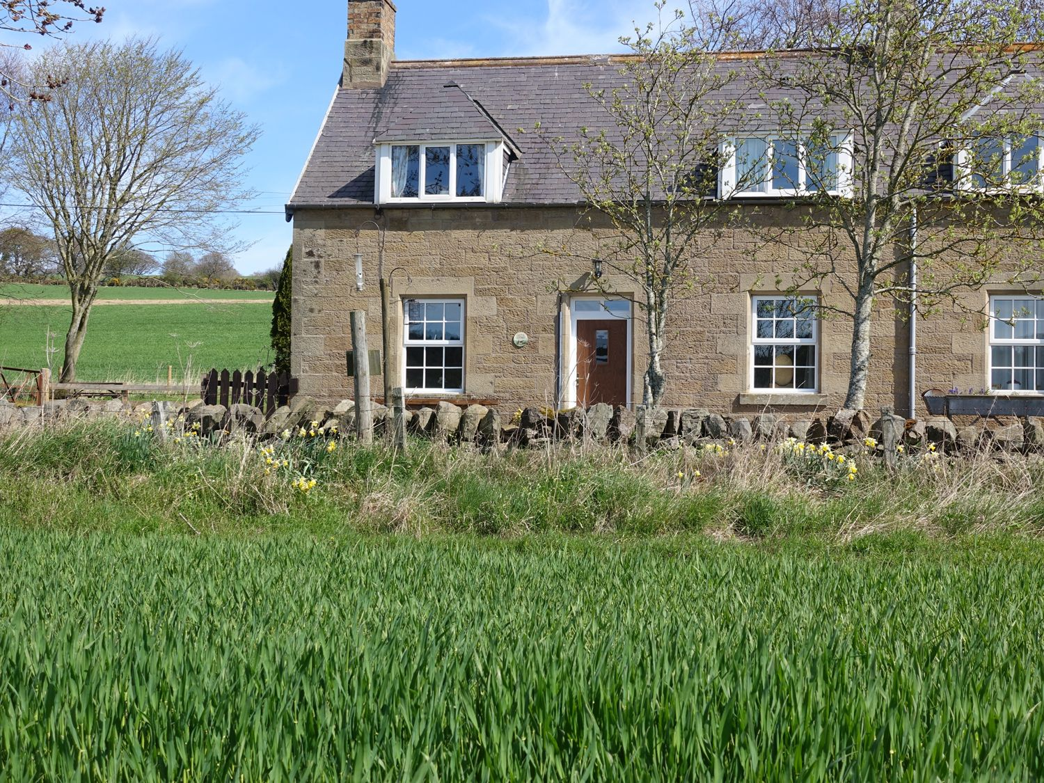 Castle Cottage - Scottish Lowlands - 951557 - photo 1