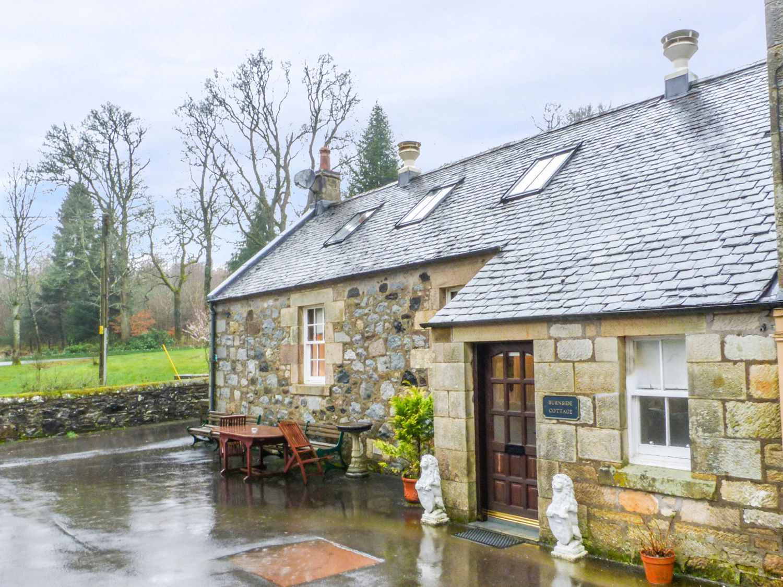 Burnside Cottage - Scottish Lowlands - 953556 - photo 1