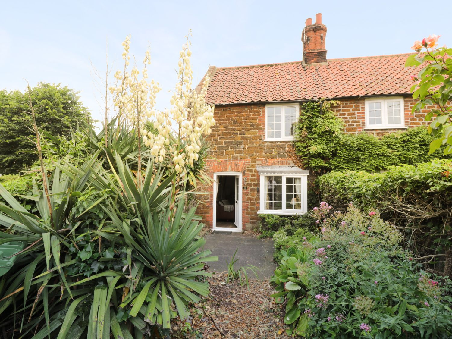 Curlew Cottage - Norfolk - 954238 - photo 1