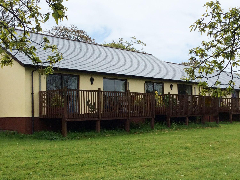 Chaffinch - Devon - 955403 - photo 1