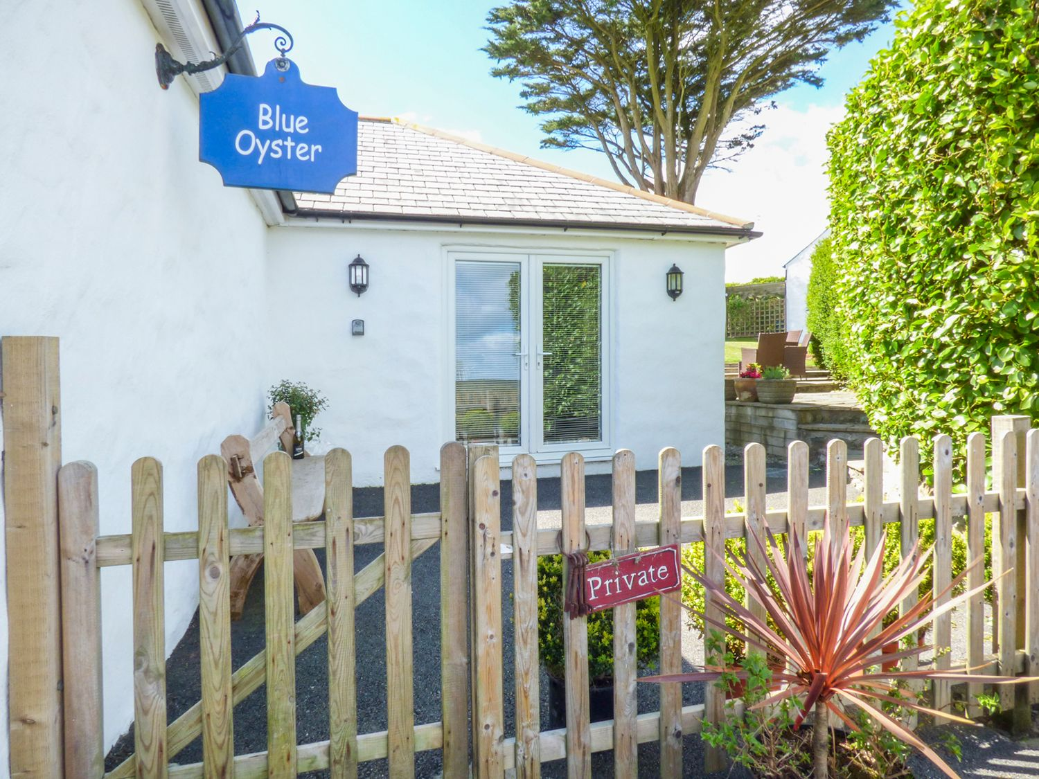 Blue Oyster - Cornwall - 957395 - photo 1