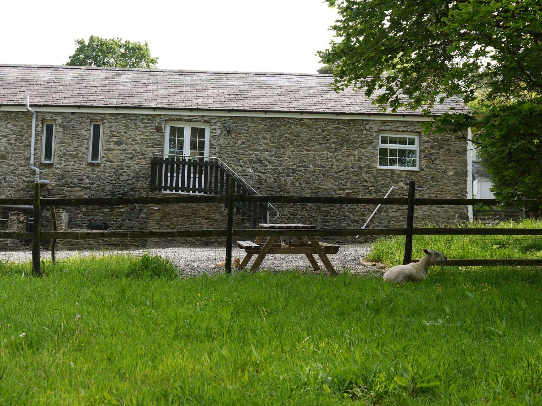 Cefn Bryn Cottage - Mid Wales - 958177 - photo 1