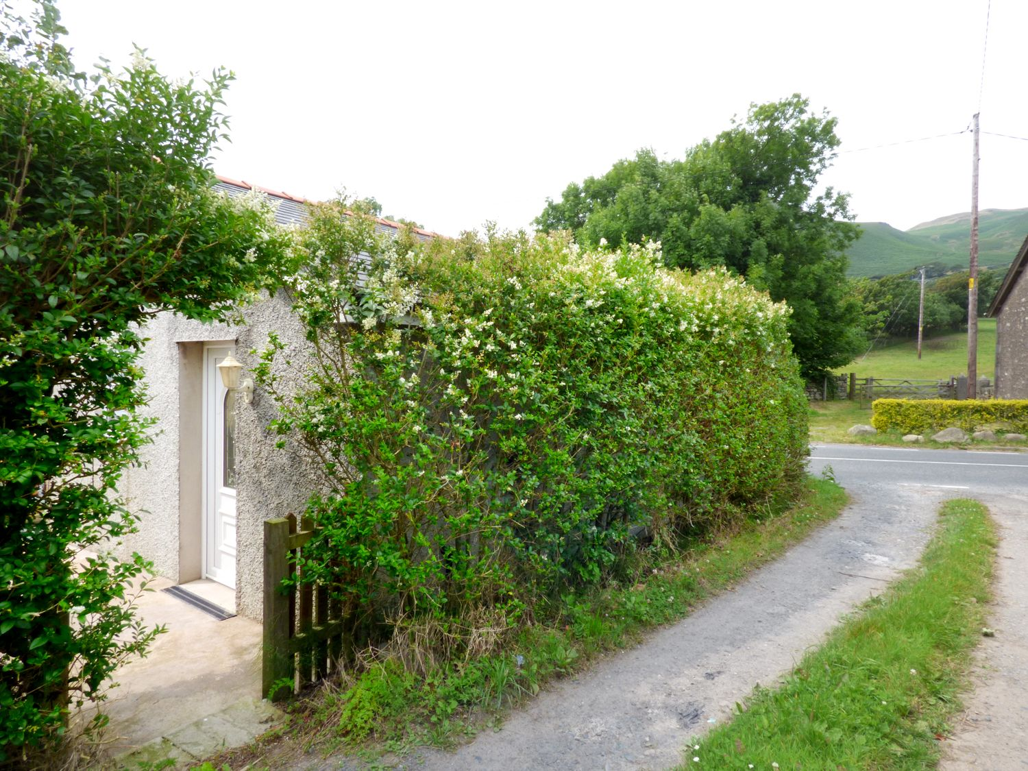 Hickory Cottage - Lake District - 962708 - photo 1