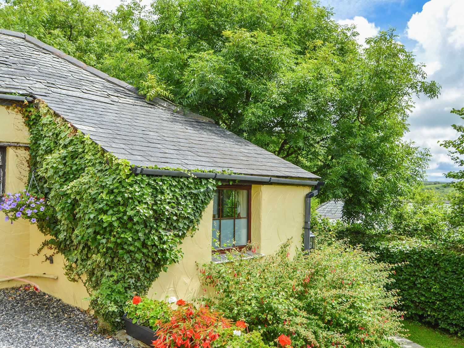 Barley Cottage - Devon - 965124 - photo 1