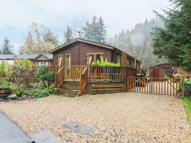 Pine Tree Lodge - Scottish Lowlands - 967770 - photo 1