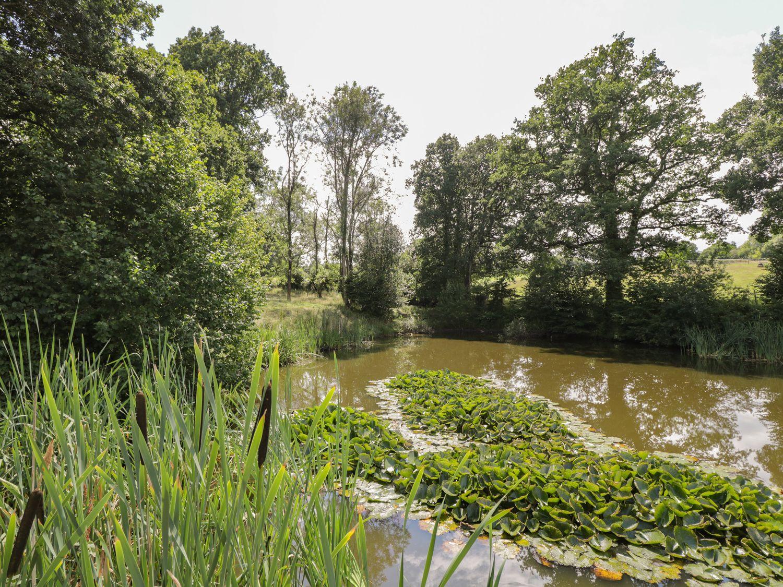 Pond View, Rockbourne