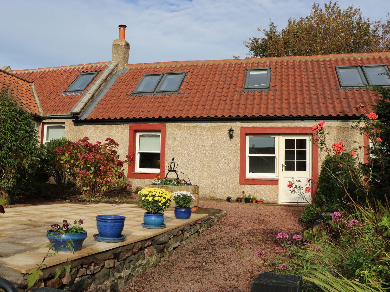 Rose Cottage - Scottish Lowlands - 968280 - photo 1