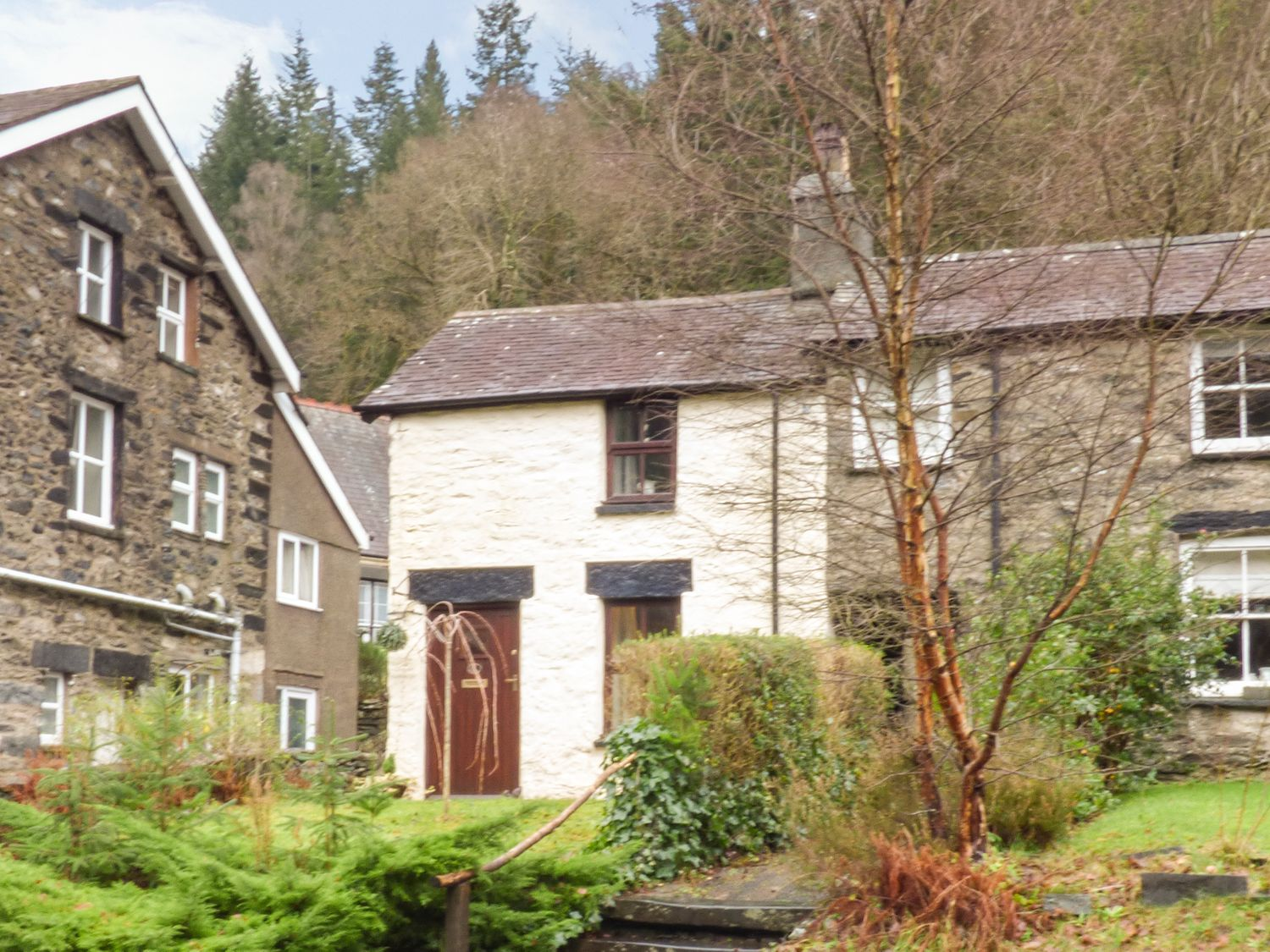 Squirrel Cottage - North Wales - 970753 - photo 1