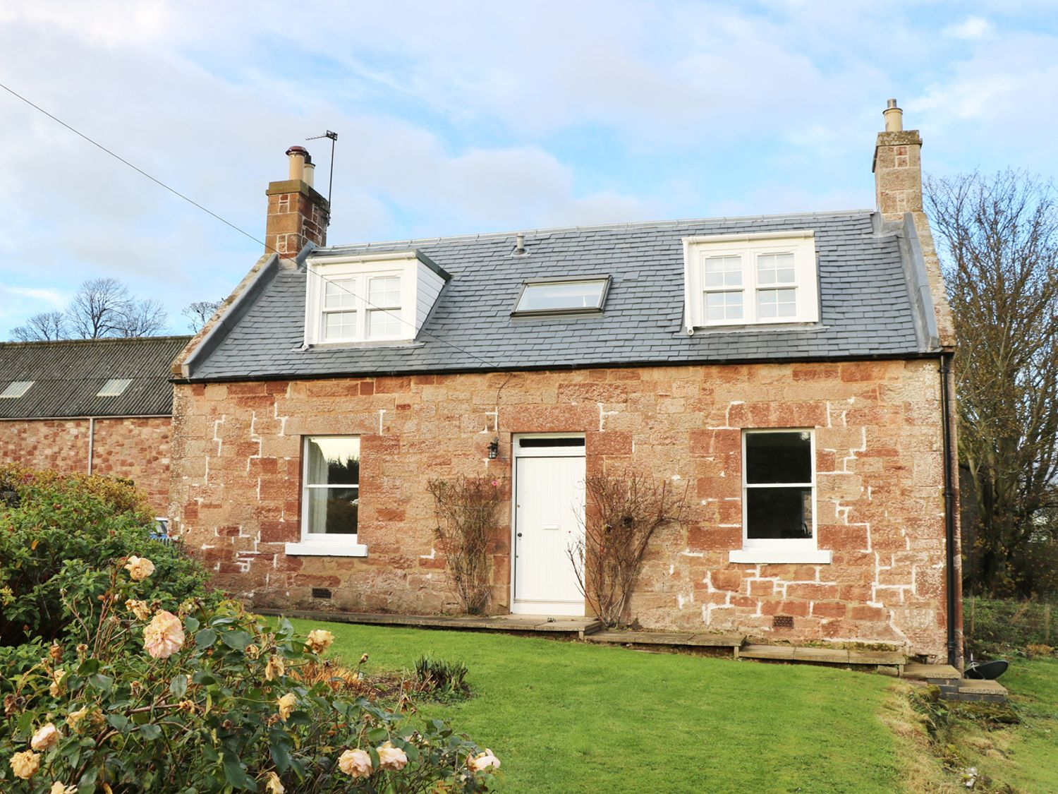 The Grieves Cottage - Scottish Lowlands - 971573 - photo 1