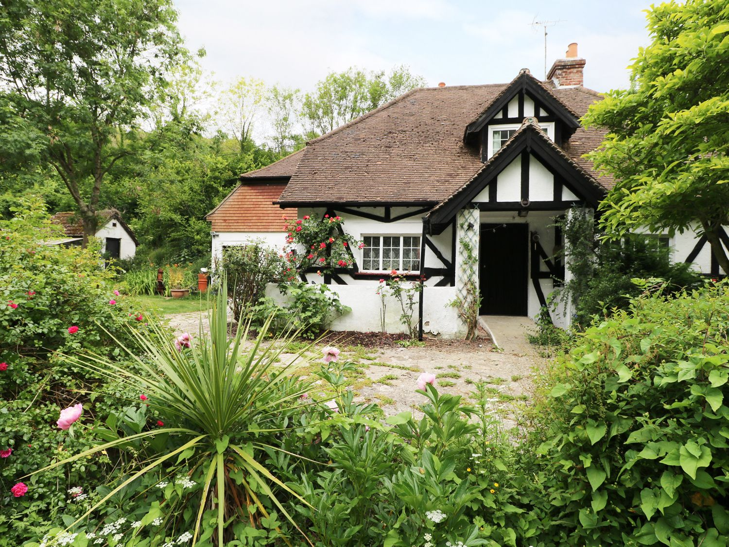 Gibbys Cottage - Kent & Sussex - 971740 - photo 1