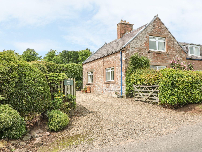 Wild Rose Cottage - Scottish Lowlands - 972447 - photo 1