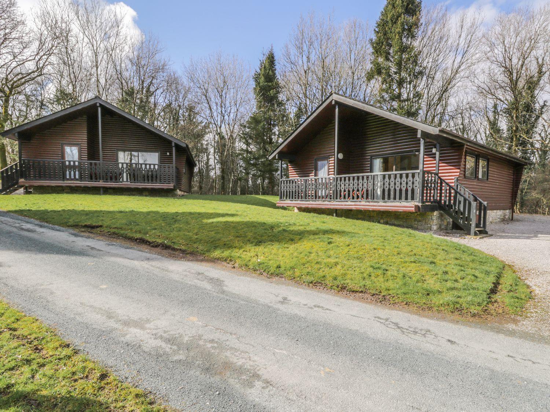 Elm Lodge - Pine - Lake District - 973058 - photo 1