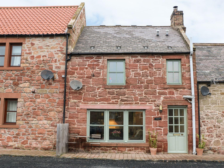 Angus Cottage - Scottish Lowlands - 973692 - photo 1