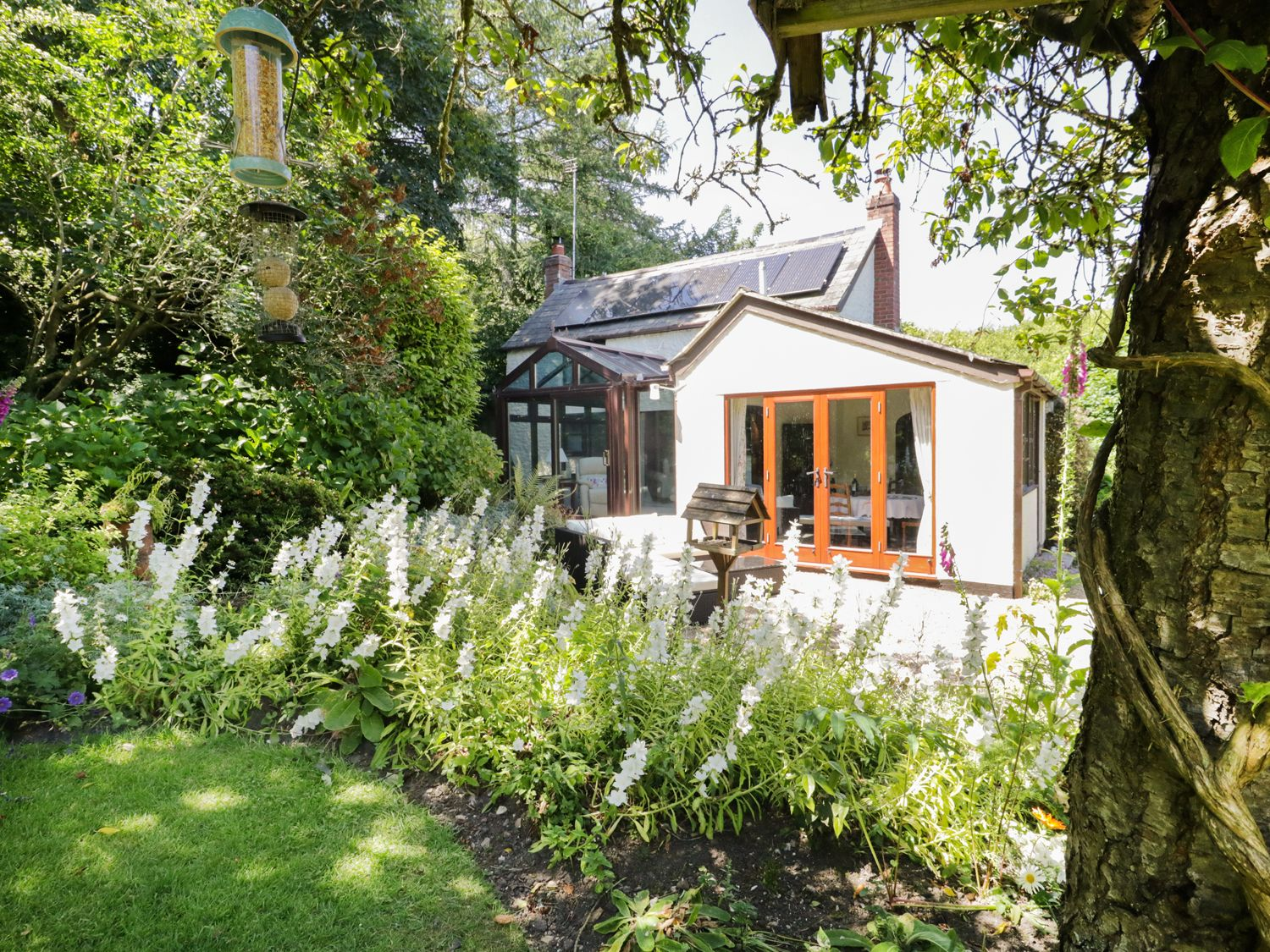 Lane End Cottage - Devon - 974621 - photo 1