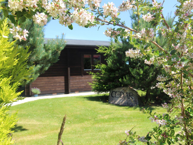Cedar Lodge - Cornwall - 974713 - photo 1