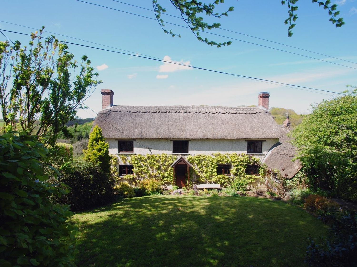 Hope Cottage - Devon - 976094 - photo 1