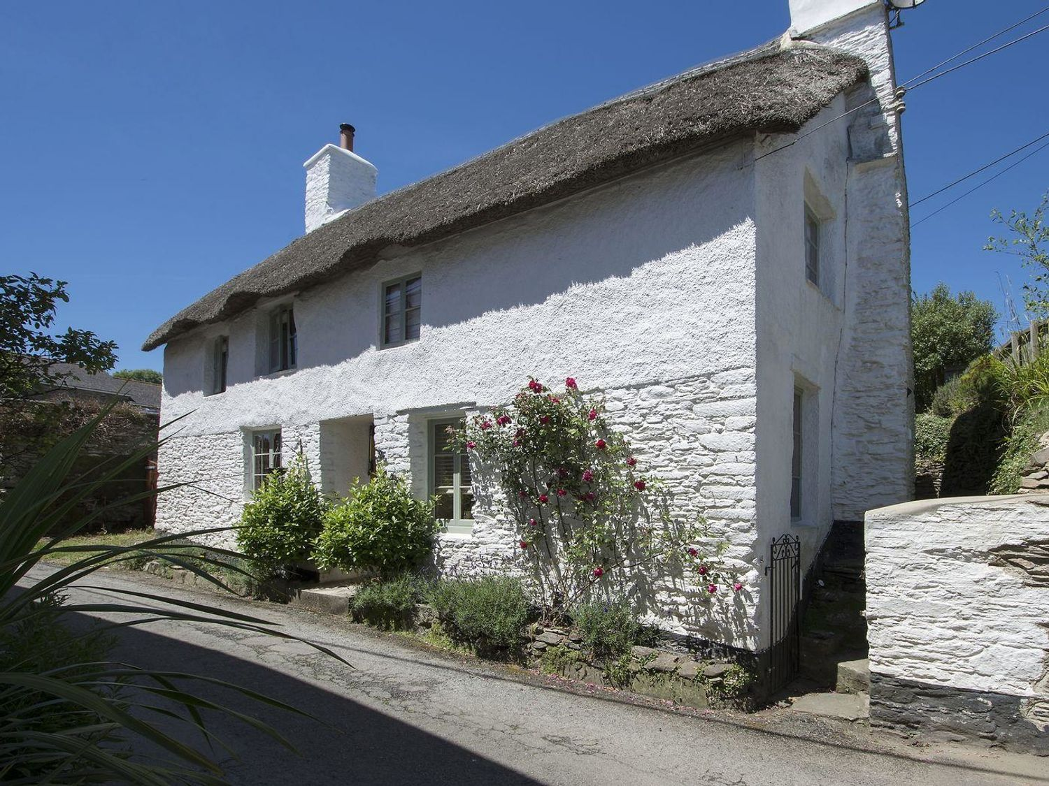 The Cottage - Devon - 976223 - photo 1