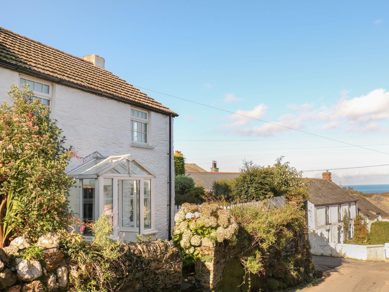 Fuchsia Cottage - Cornwall - 976303 - photo 1