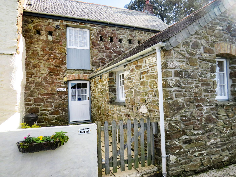 Badger Cottage - Cornwall - 976529 - photo 1