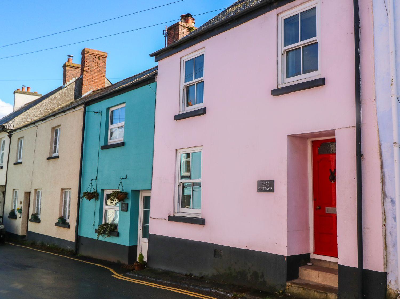 Hare Cottage - Devon - 981066 - photo 1