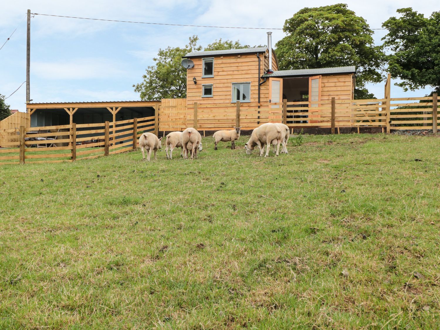Shepherds Cabin at Titterstone - Shropshire - 981606 - photo 1