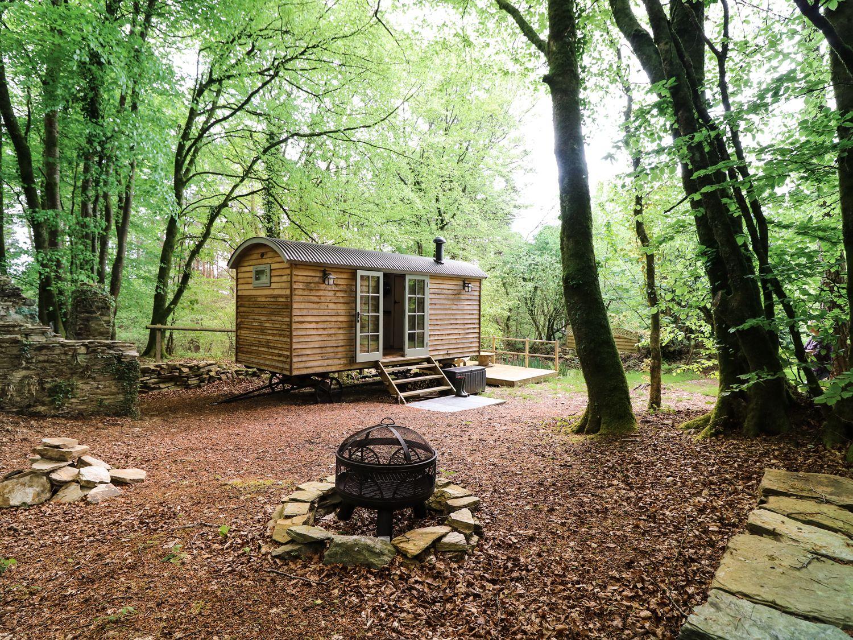 Rock View Shepherd's Hut - Devon - 983802 - photo 1