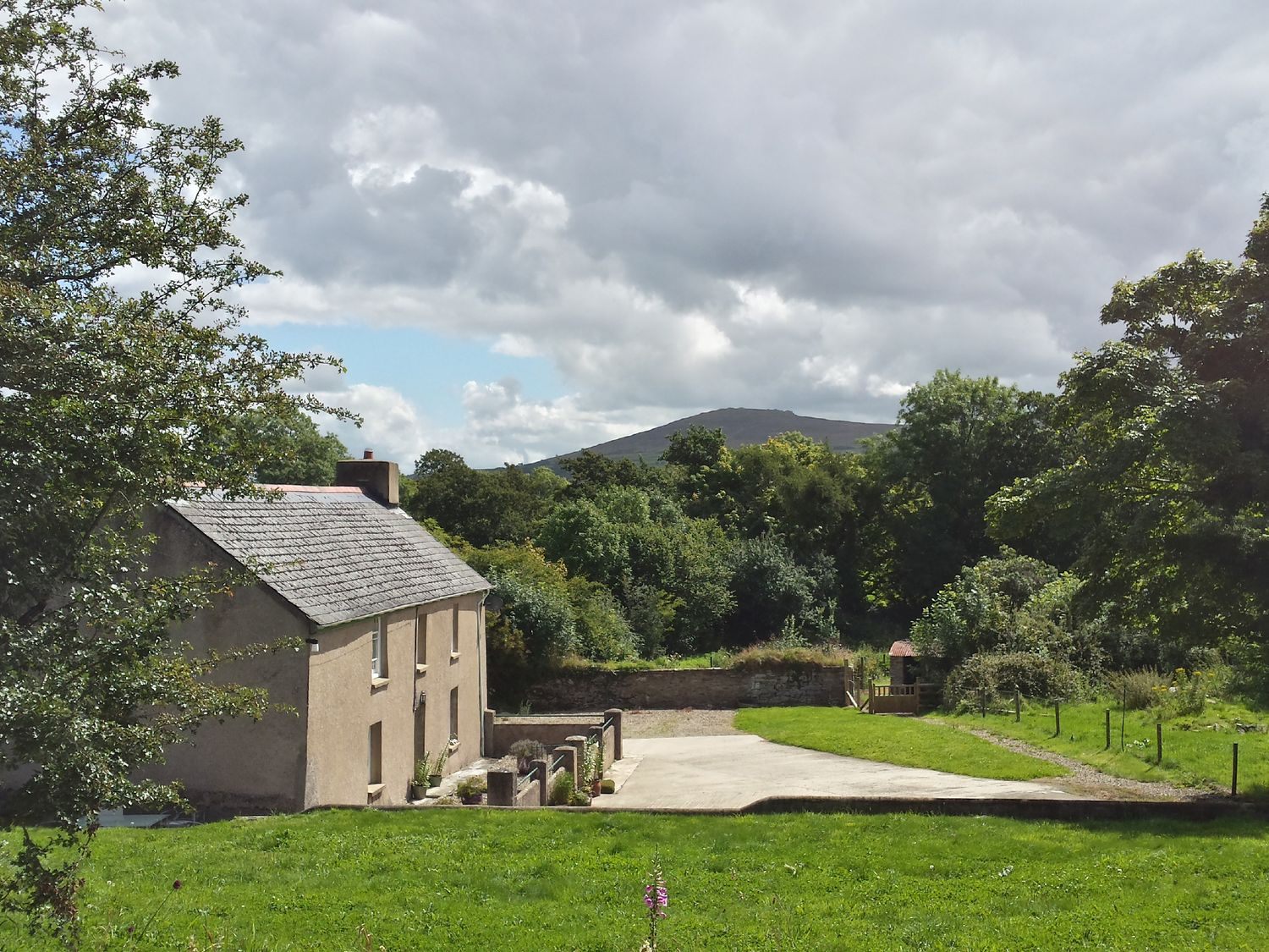 Rhostwarch Old Farm House - South Wales - 984443 - photo 1