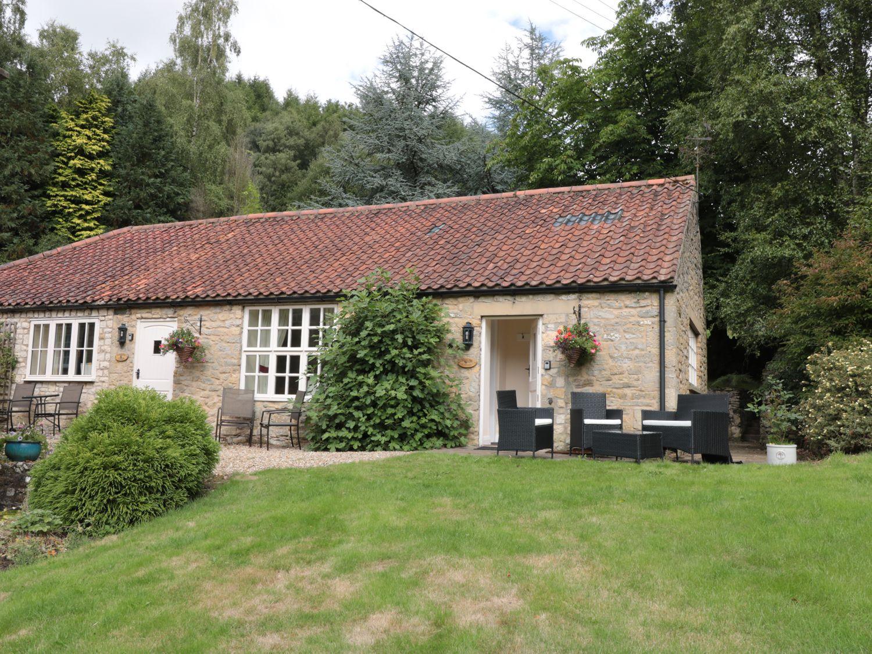 Pheasant - Whitby & North Yorkshire - 988306 - photo 1