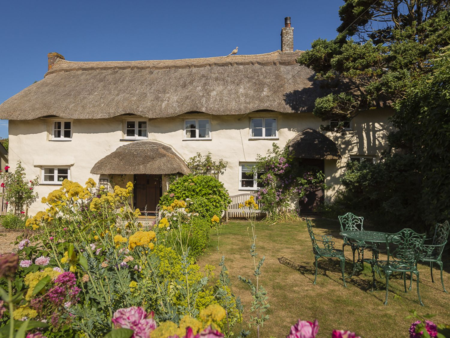 Higher Collaton Cottage - Devon - 995492 - photo 1
