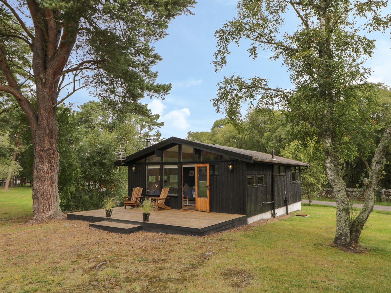 Blue Pine Lodge - Scottish Highlands - 996645 - photo 1