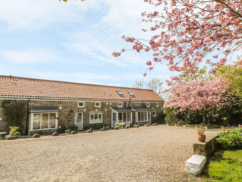Robin Cottage - Northumberland - 997902 - photo 1