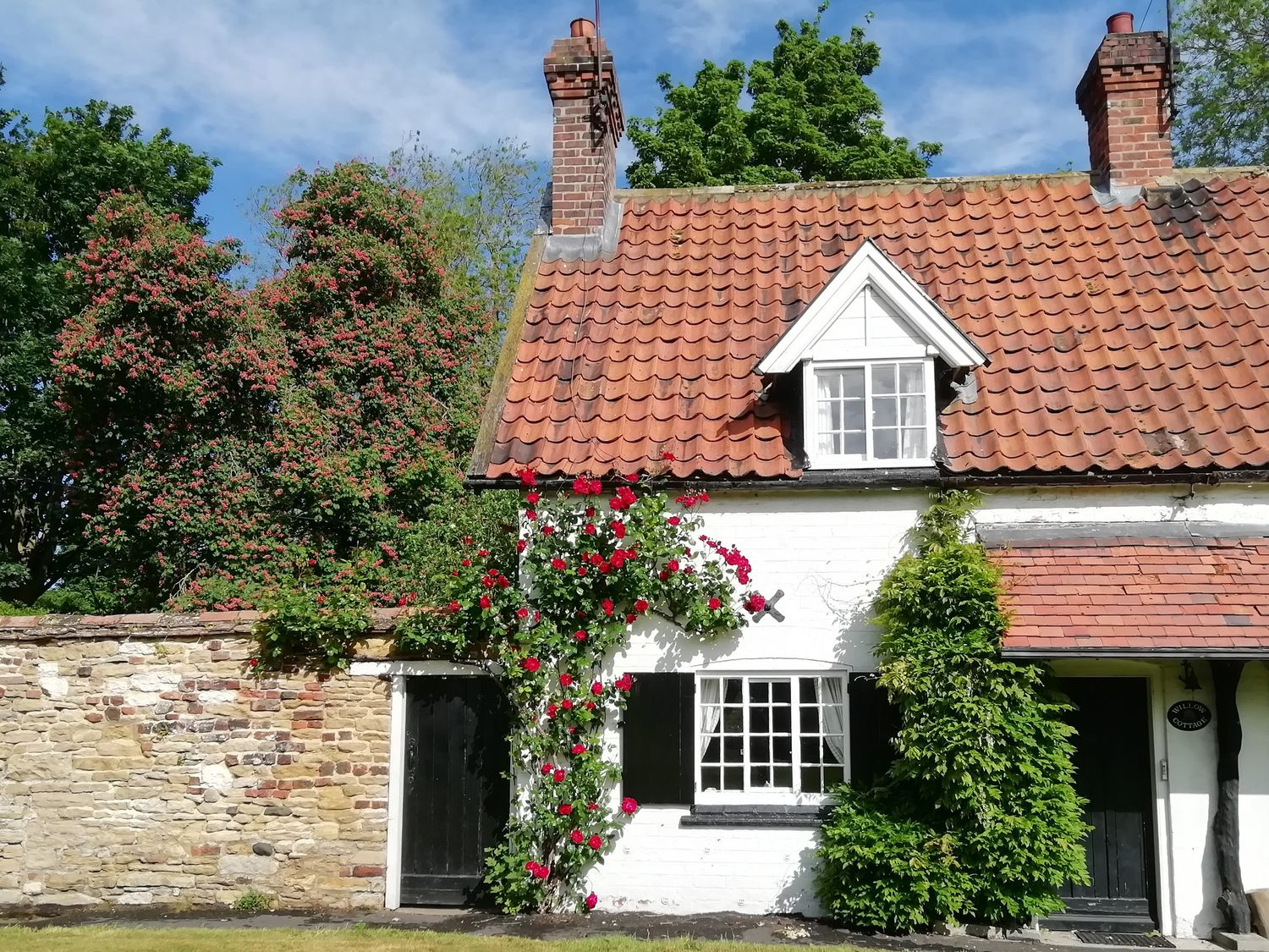 Willow Cottage - Whitby & North Yorkshire - 998906 - photo 1
