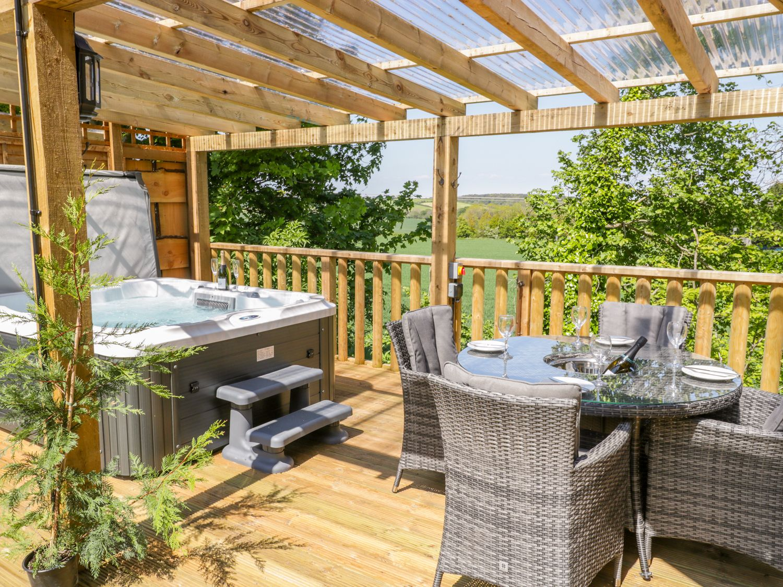 Elm Lodge - Somerset & Wiltshire - 998976 - photo 1