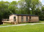 Cedar Lodge photo 2