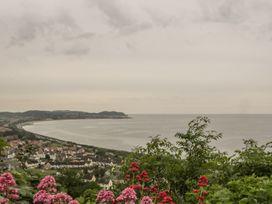 Sea-Prize View - North Wales - 1000773 - thumbnail photo 29